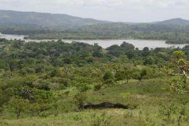 Réserve de faune d'Abokouamékro